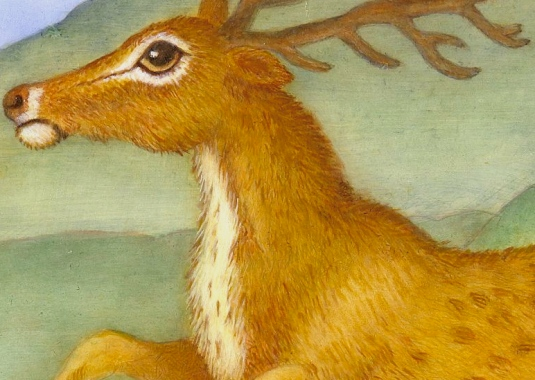 "Detail of ""Illuminated Deer"" 10""x8"" silverpoint and oll on true gesso panel by Marque Todd 2013"